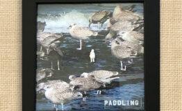 paddling_jute
